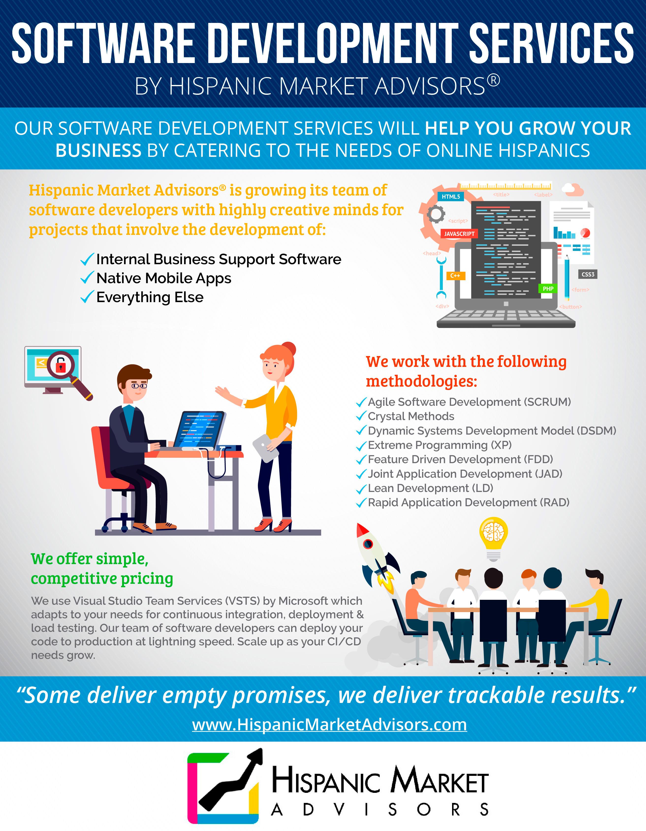 Infographic Software Development